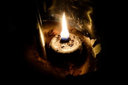 lamp light: lamp light oil