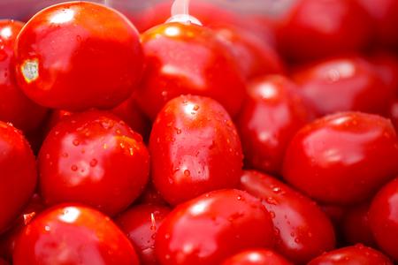 washing tomatoes for paste Reklamní fotografie