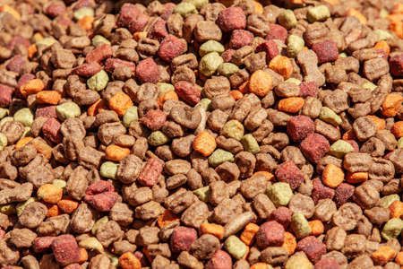 Close up of cat dried colorful food background