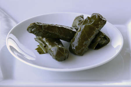 Grape Sarma (Dolma), stuffed grape leaves with rice and meat on white plate, selective focus. Banque d'images