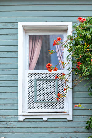 classic Turkish Ottoman style windows detail