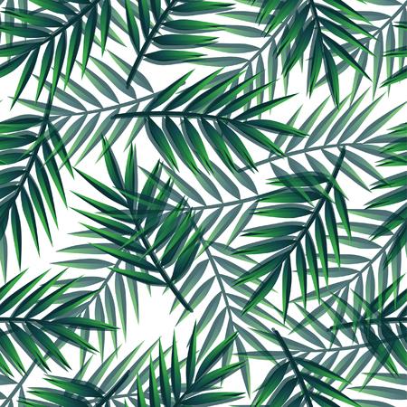 Patrón de hojas de palma transparente Ilustración de vector