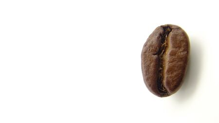 Close up of a roasted coffee bean on white background