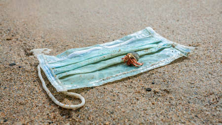 Waste during COVID-19. Hermit crab walking over of a single-use face masks, discarded to ocean. Environmental and coast pollution of coronavirus. Trash in beach threatening health of oceans. Stok Fotoğraf