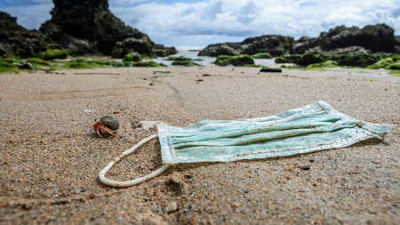 A hermit crab near medical waste, masks garbage trash on sea water. Coronavirus covid-19 pollution disease the environment. Used surgical mask thrown on the seashore of a beach. 免版税图像