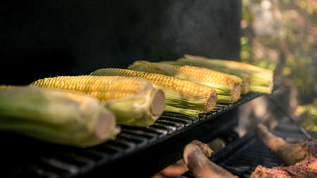 Chef cooking barbecue with a corn on the cob on grilled. Very delicious tasty corns on a barbecue in backyard. Food cooked with grilling BBQ in the garden of a house.