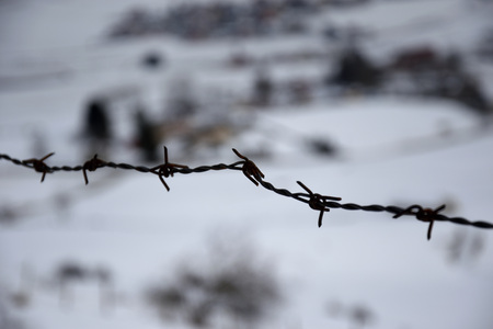 Barbed wire on snow