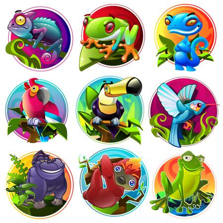 caricaturas de ranas: Animales divertidos dibujos animados en colores brillantes. Vectores
