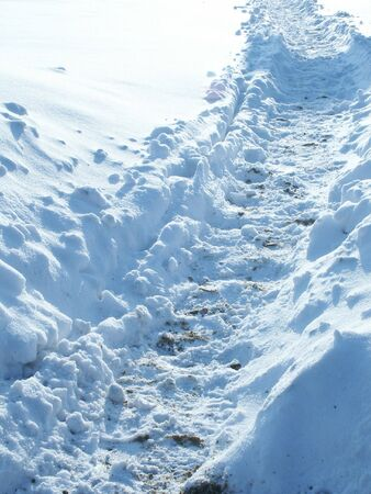 Path in Snow. photo