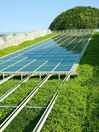 Solar Panels mit grünen Umgebung.