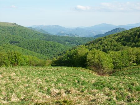 A view of a Meadow in Poloniae Alpe - Besczade. photo