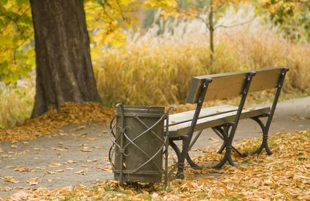 Autumn with golden Leaves around a Litter Basket and Bench. photo