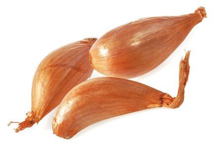 Shallot onions isolated on white background.