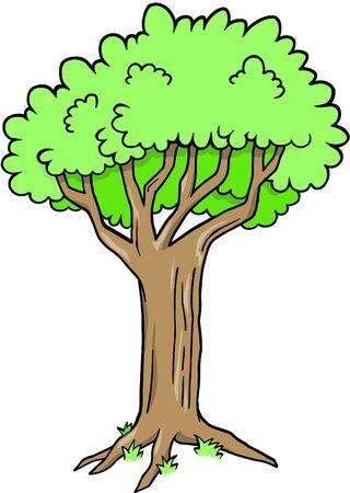 Tree Vector Illustration Ilustracja