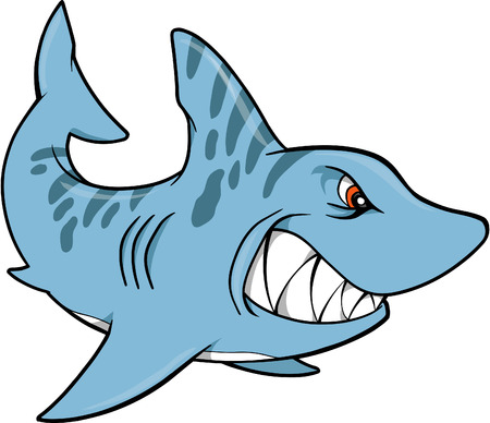 sea creatures: Shark Vector Illustration
