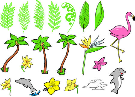 Tropical Set Vector Illustration