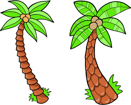 Palm Tree Vector Illustratie