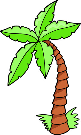 tree:  Tropical Tree Vector Illustration