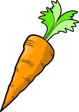 carotte Vector Illustration