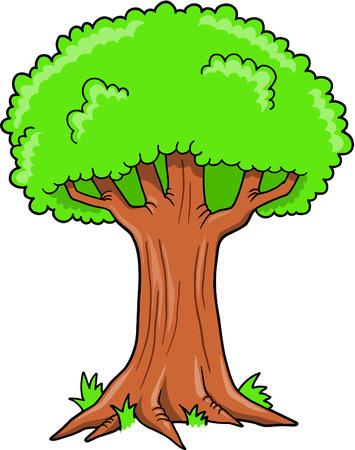 Tree Vector Illustration Illustration