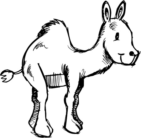 Schetsmatig Camel vectorillustratie
