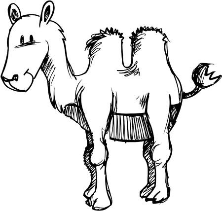 illustration: Sketchy Camel Vector Illustration