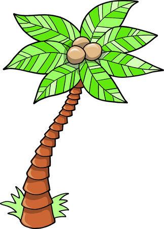 Tropical Tree Vector Illustration