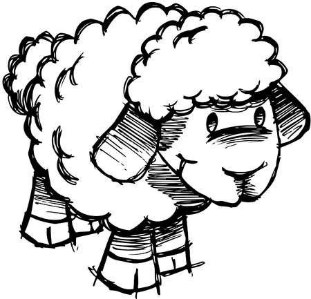 cartoon sheep: Sketchy Sheep Lamb Illustration