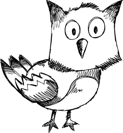 Doodle Sketchy owl  Vector