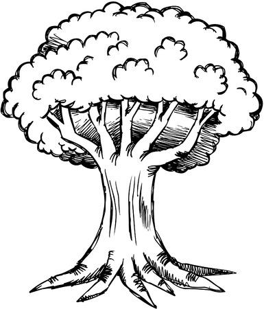 Skizzenhaften Eiche Baum-Abbildung Standard-Bild - 6847562