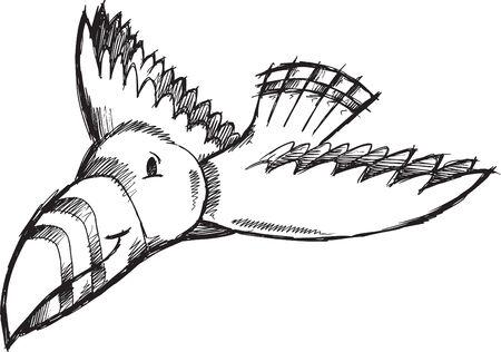 sketch: Bird Doodle Sketch  Illustration