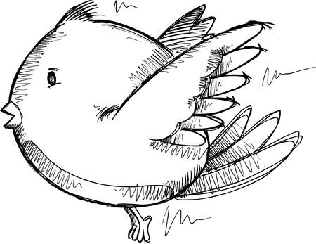 Bird Sketch Drawing Ilustrace