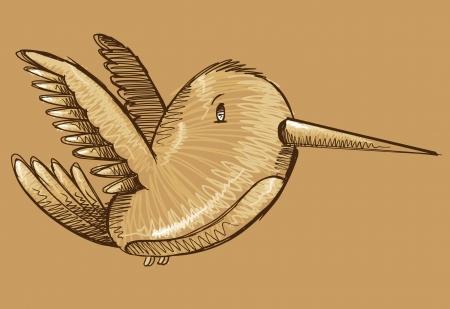 Humming Bird Sketch Doodle Ilustrace