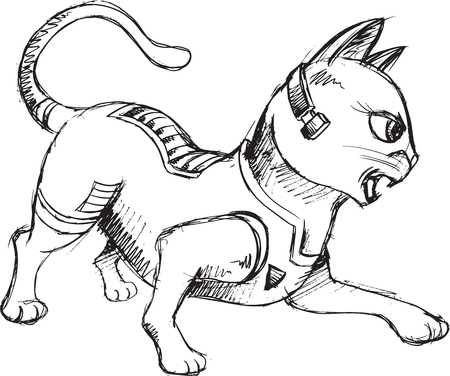 warriors: Kitten Sketch Doodle Illustration