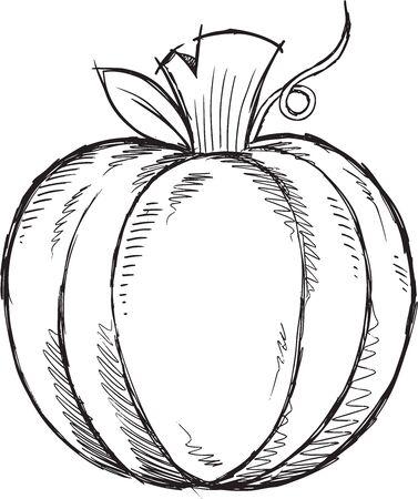large pumpkin: Doodle Sketch Pumpkin Vector Illustration Art Illustration