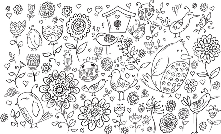 ladybug on leaf: Doodle Flowers and Birds Vector Set Illustration