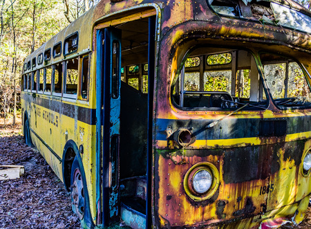 decaying: Rusty, old, junked car in the woods