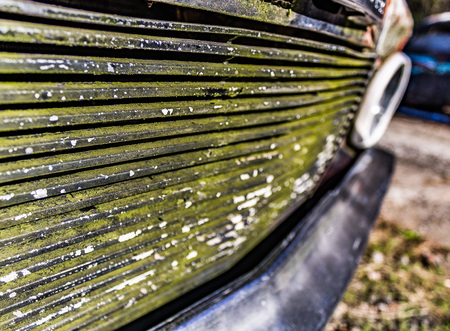 junked: Rusty, old, junked car grill in the woods