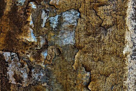 Peeling, rustic, concrete wall of a  bridge