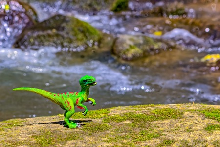 forced perspective: Velociraptor walking on old rock with water in  background