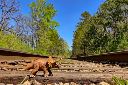 forced perspective: Triceratops walking on old rail road  tracks