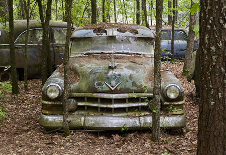 Old, Green, Rusting Car in the Woods Stock Photo