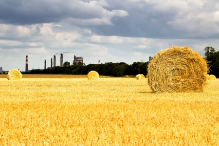 haystack in the field on the background of the factory photo