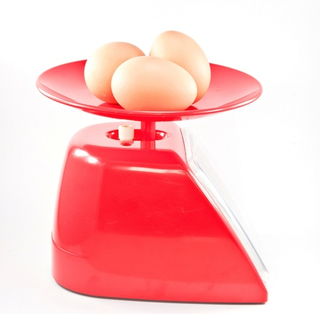 Eggs on the red scales. photo