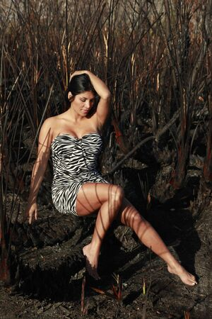 Animal print dress, brunette and charred wild palm background leaving striped pattern over skin Stock Photo - 4689750