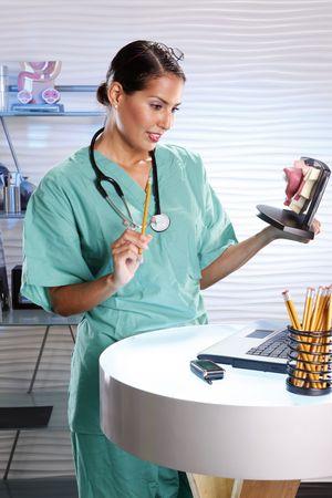 urologist: Urologist holding a female bladder model