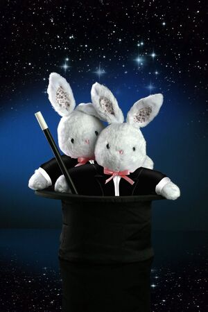 A couple of bunnies turn into magicians as they pop out of the top hat