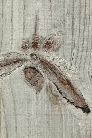 Wood plank with curious branch knot formations Stock Photo