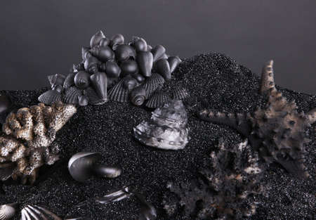 jewelry design: Black sand and seashell background for small object display Stock Photo