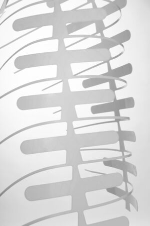 Plastic cutout ribs Stock Photo - 12043699